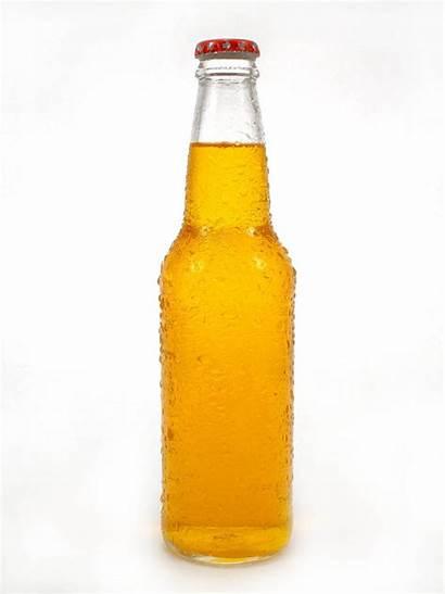 Beer Bottle Bierflasche Cerveza Botella Clipart Bier
