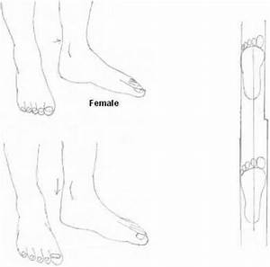 Anime Body Outline images