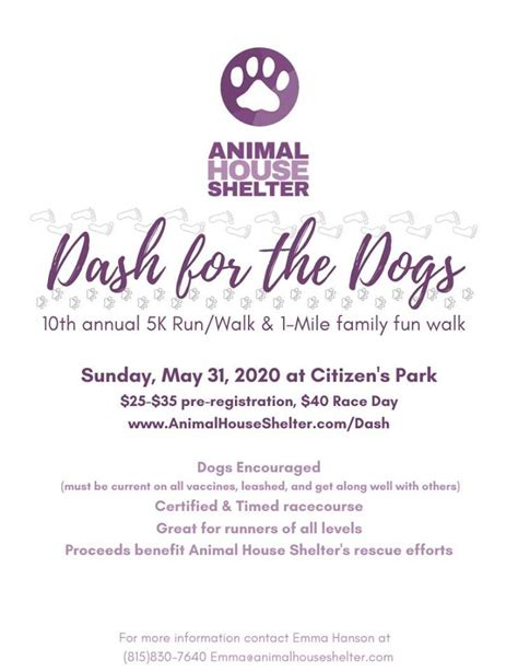 dash  dogs  animal house shelter