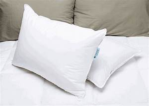 Pillowscom for Comfort inn suites pillows