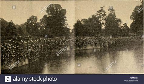 obstbäume im kübel halten waldpflanzen stock photos waldpflanzen stock images alamy