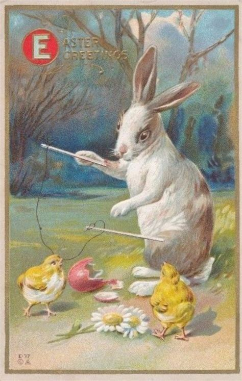 collection   cute bunny rabbit vintage easter