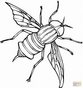 Fly 5 coloring page | Free Printable Coloring Pages