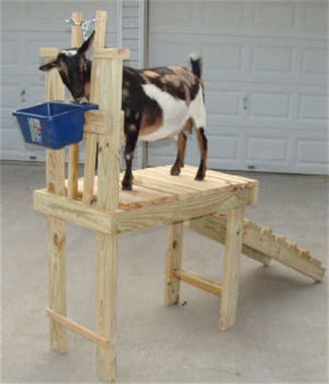 english furniture  lazy boy goat stanchion plans home woodworking shop size