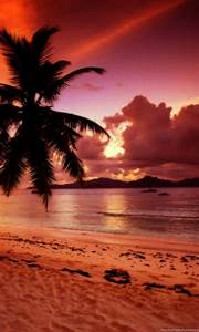 Tropical Beach Paradise Sunset Wallpaper. Desktop Background