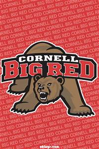 View topic - Cornell 2012 | LaxPower