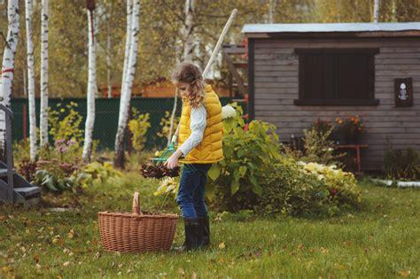 Garten Winterfest Machen Gemüsebeet by Garten Winterfest Machen 187 Diese Arbeiten Stehen An