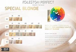 22 Best Images About Hair Color Charts On Pinterest