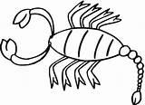 Skorpion Scorpione Colorare Scorpion Disegni Coloring Sheet Disegno Printable Ausmalbilder Kostenlos Zum Malvorlage Uno Stampare Scorpioni Mewarnai Animal Bambini sketch template