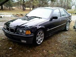 1995 BMW 3 Series - Pictures - CarGurus