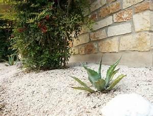 Gravier Pour Jardin : jardin sur gravier conseils d 39 entretien ~ Premium-room.com Idées de Décoration