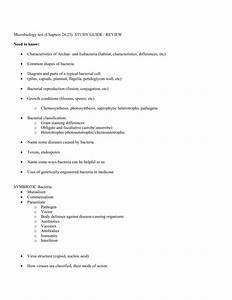 Microbiology Test  Chapters 24 25  Study Guide    Review Need