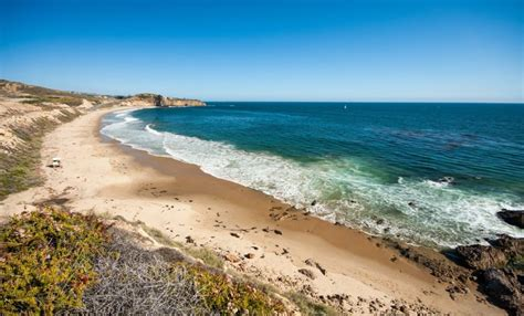 cove state park reef point laguna ca california beaches