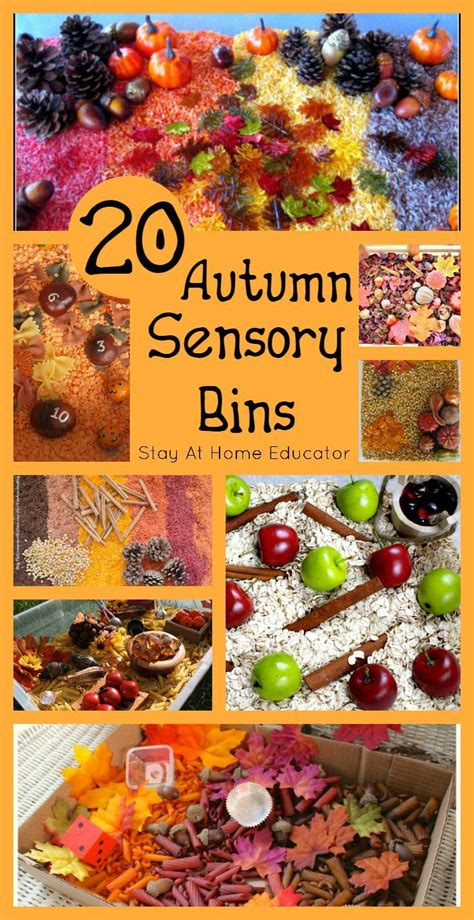 20 autumn sensory bins sensory activities for 602 | 1593fa8cf163bf01375cf8030aa740f6