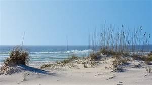 Gulf State Park | Alabama Living Magazine