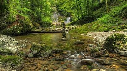 Outdoors Forest Nature Water Trees Outdoor Wallpapers