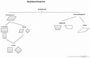 Quadrilateral Family Tree   Family Tree