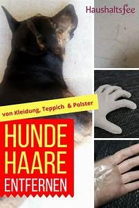 Teppich Auf Fliesen : hundehaare entfernen auf kleidung teppich fliesen putzen haushalt tipps pinterest ~ Eleganceandgraceweddings.com Haus und Dekorationen