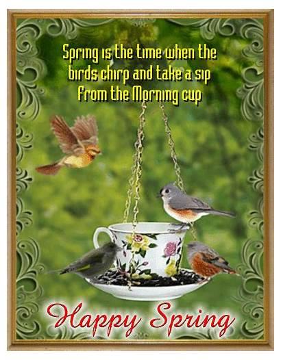 Springtime Ecard Spring Equinox Greetings Greeting Cards