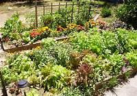 raised vegetable garden 7 Gorgeous Raised Bed Vegetable Gardens - Off Grid World