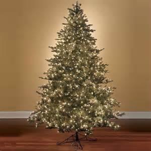 world s best prelit noble fir 9 1 2 foot slim white lights christmas tree ebay