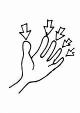 Coloring Fingers Finger Spanish Flashcards Rule Health Printable Template Edupics Dedo El sketch template