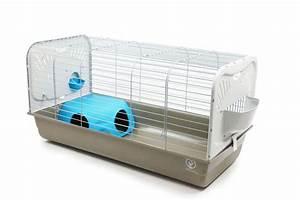 Cage A Cochon D Inde : cage zolia caesar pour lapin et cochon d 39 inde cage ~ Dallasstarsshop.com Idées de Décoration