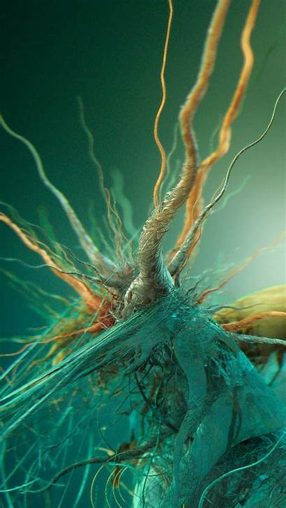 Iphone Android Plus Bacteria Roots S5 Galaxy