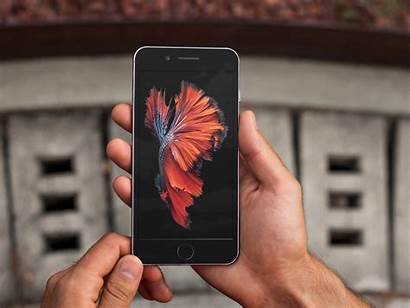6s Iphone Wallpapers Still Motion Stills Backgrounds