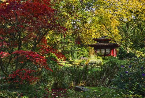 Japanischer Garten Im Herbst by Herbst Im Japanischen Garten Foto Bild Natur Herbst
