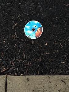 10 coisas aleatórias tristes encontradas na rua ...