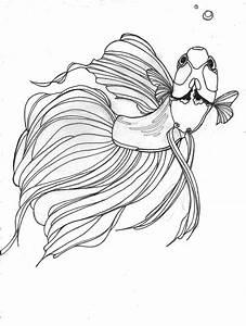 Betta drawing would make a great Tattoo | Betta Fish ...