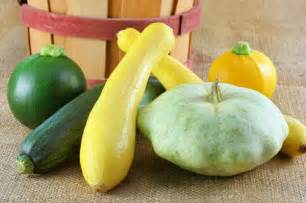 Types of Summer Squash Varieties