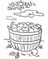 Coloring Harvest Ramadan Thanksgiving Basket Fall Apples Printable Ausmalbilder Sheets Dinner Farm Herbst Clipart Fruits Rabbit Stencil Colorear Popular Sheet sketch template