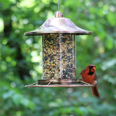 bird seed feeders pet copper panorama bird feeder 312c