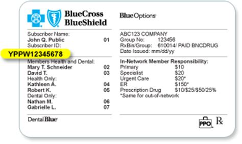 If you need a new plan, we have the options you're looking for. blue cross blue shield of nc customer service number