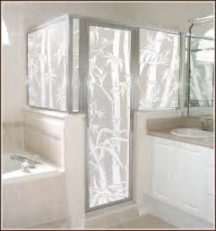 Shower Door Frosting Film by Privacy Plus Beauty Equals Wallpapered Windows For The