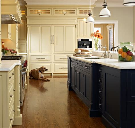 Elegant Kitchens Traditional Kitchen new york by