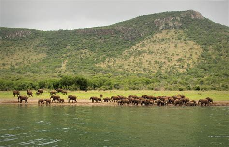 info cuisine pakamisa lodge and safaris excursions gallery