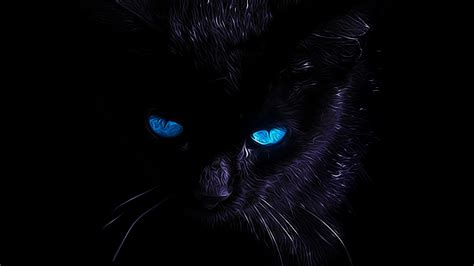 Background Black Cat by Black Cat Wallpapers Wallpaper Cave