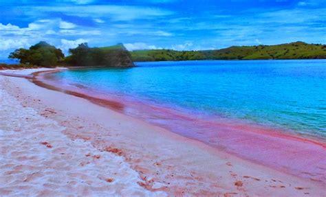 beauty   underwater world  batu bolong