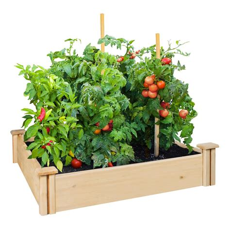 greenes fence raised garden bed greenes fence 4 ft x 4 ft x 5 5 in premium cedar raised