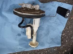 Pompe De Gavage 406 Hdi : pompe de gavage 406 hdi 2 l 110cv phase 2 passion ~ Gottalentnigeria.com Avis de Voitures