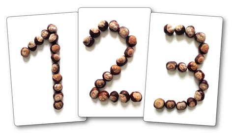 que faire avec des marrons que faire avec des marrons en maternnelle activit 233 s sur