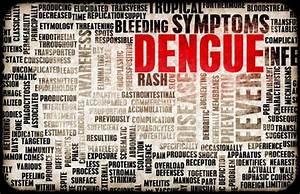 Tigermücke Stich Symptome : dengue fieber in thailand gefahr im urlaub minimieren urlaub in thailand ~ Frokenaadalensverden.com Haus und Dekorationen