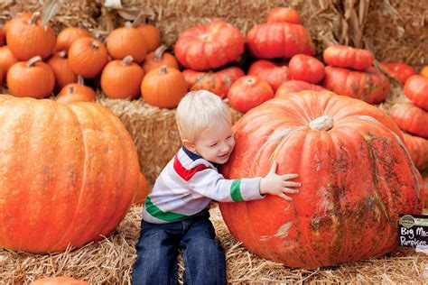 October Harvest Festivals: Know the Basics — National ...