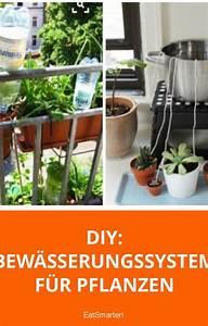 Bewässerungssystem Für Zimmerpflanzen : blumen und pflanzen automatisch bew ssern pinterest bew sserungssysteme pflanze und pflanzen ~ Markanthonyermac.com Haus und Dekorationen