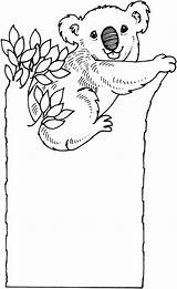 Koala Coloring Pages Bear Koalas Tree Printable Sad Drawing Bears Colouring Animal Cartoon sketch template