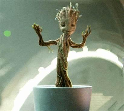 Groot Dancing Guardians Galaxy Pot Marvel Yahoo