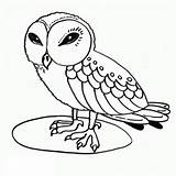 Coloring Owl Owls Printable Sheets Wise Clipart Printables Birds sketch template